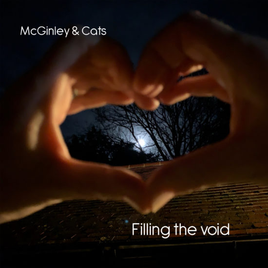 McGinley and The Cats - Filling The Void
